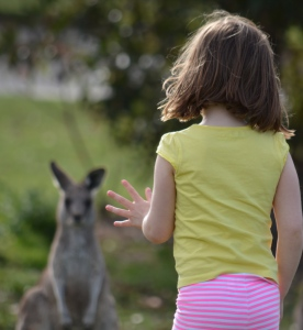 My six year old meeting a kangaroo.